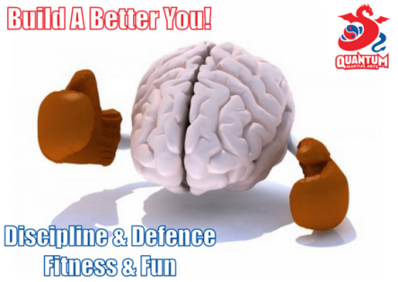 QMA - Mental Toughness for Martial Artists Blog