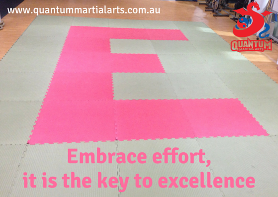 Effort leads to excellence(1)