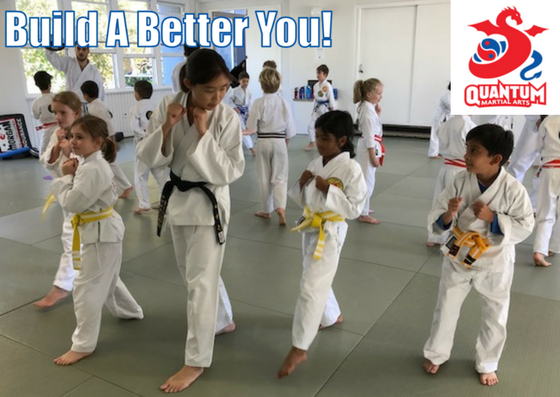 QMA - Martial Arts Confidence Booster