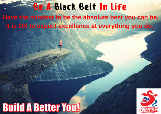 QMA - Be A Black Belt In Life 3