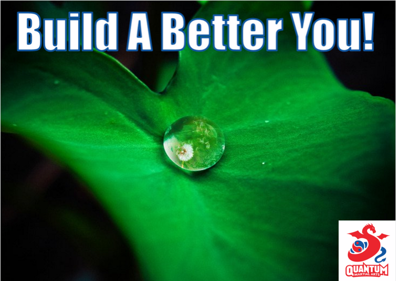qma-build-a-better-you-in-2017