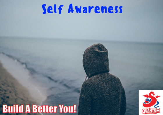 QMA - Self Awareness Blog
