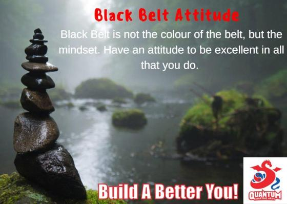 QMA - Black Belt Attitude 3