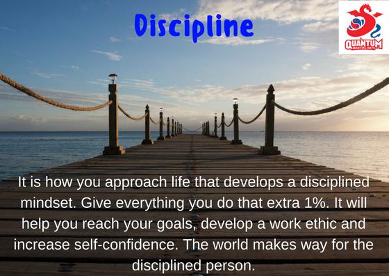 QMA - Discipline